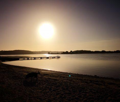 Morgenstund ved Svendborg Lystbådehavn
