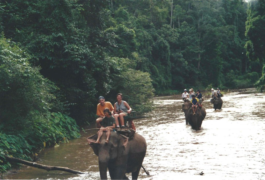 Elefantmarch
